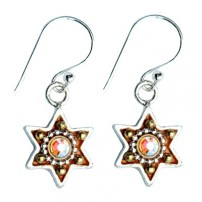 Enamel Star of David Earrings - Bronze