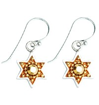 Golden Enamel & Silver Star of David Earrings