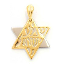 Gold Filled Shema Two Color Star of David Pendant