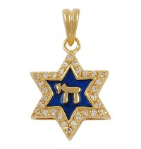Blue Enamel Star of David Pendant - Gold Filled