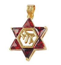 Garnet Chai Star of David Pendant - Gold Filled