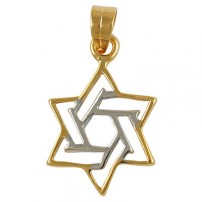 Two Color Star of David Pendant - Gold Filled