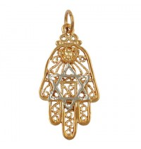 Two-tone Hamsa Star of David Pendant  - Gold Filled