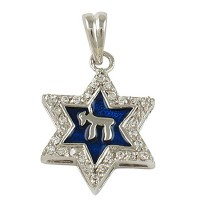 Chai Star of David Necklace