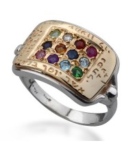 Hoshen Kabbalah Ring - Gold & Silver